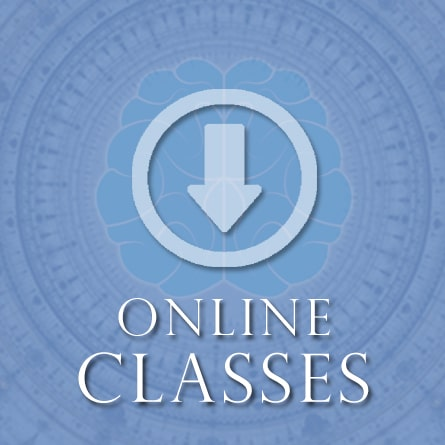 Online Classes & Products